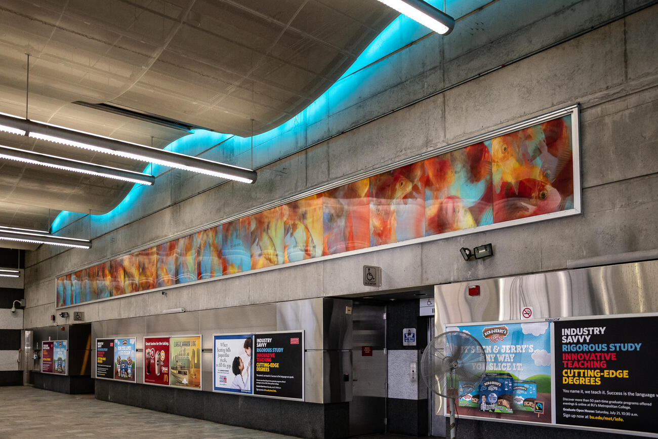 Marybeth Mungovan and Jason Asselin's goldfish mural at World Trade Center Station.