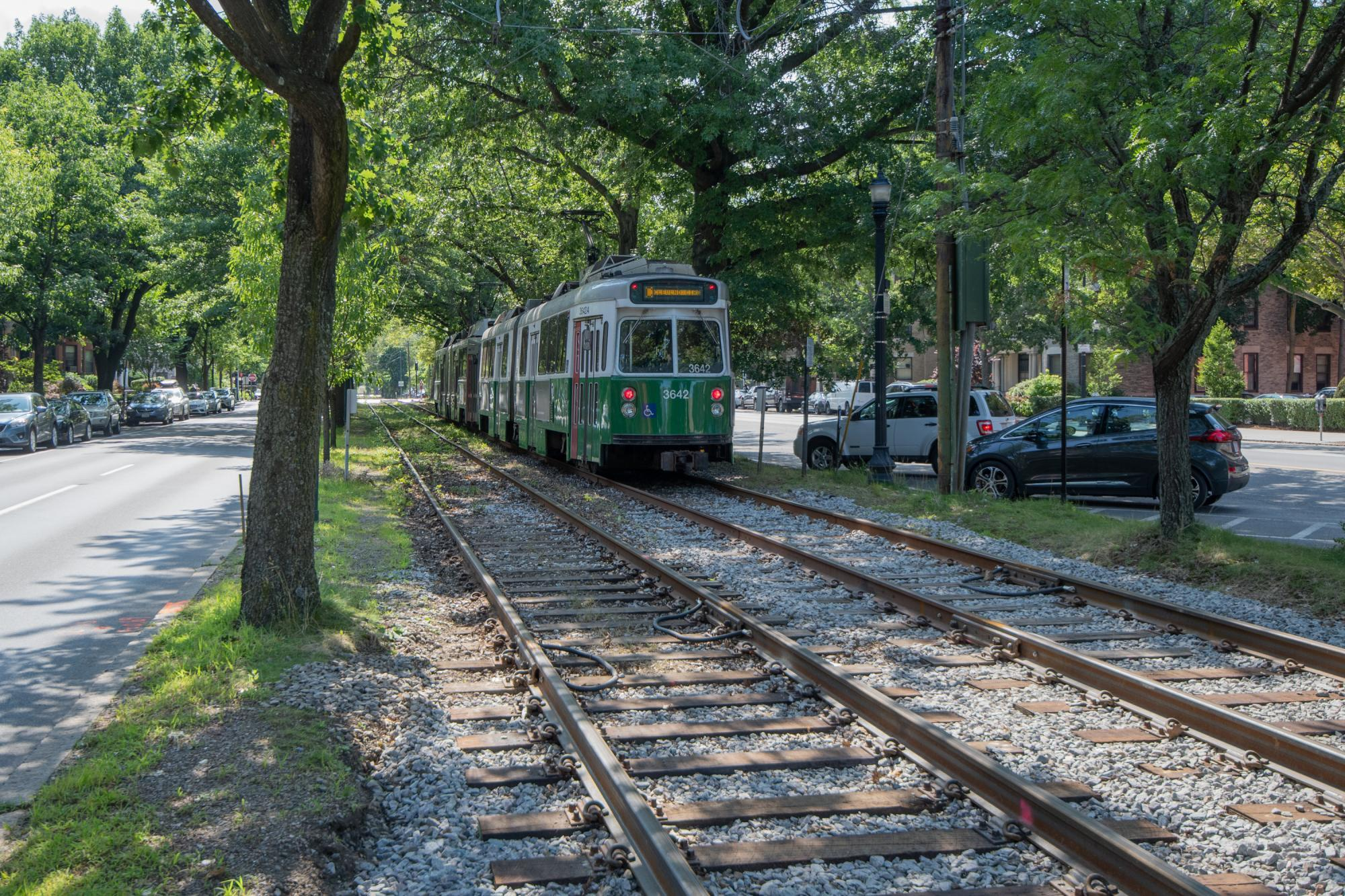Green Line C train passing under trees in Brookline