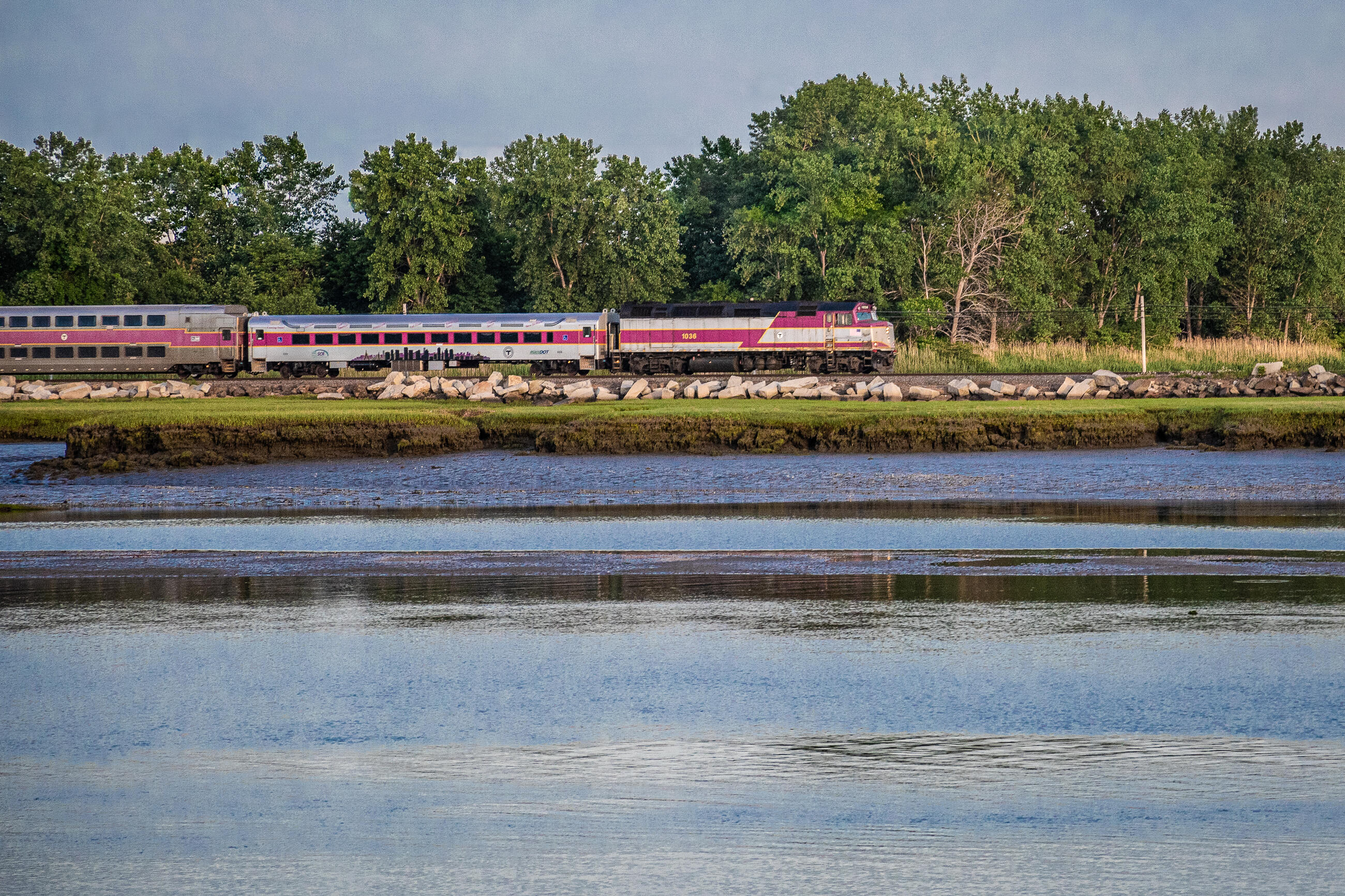 Commuter Rail passing by wetlands and waterways