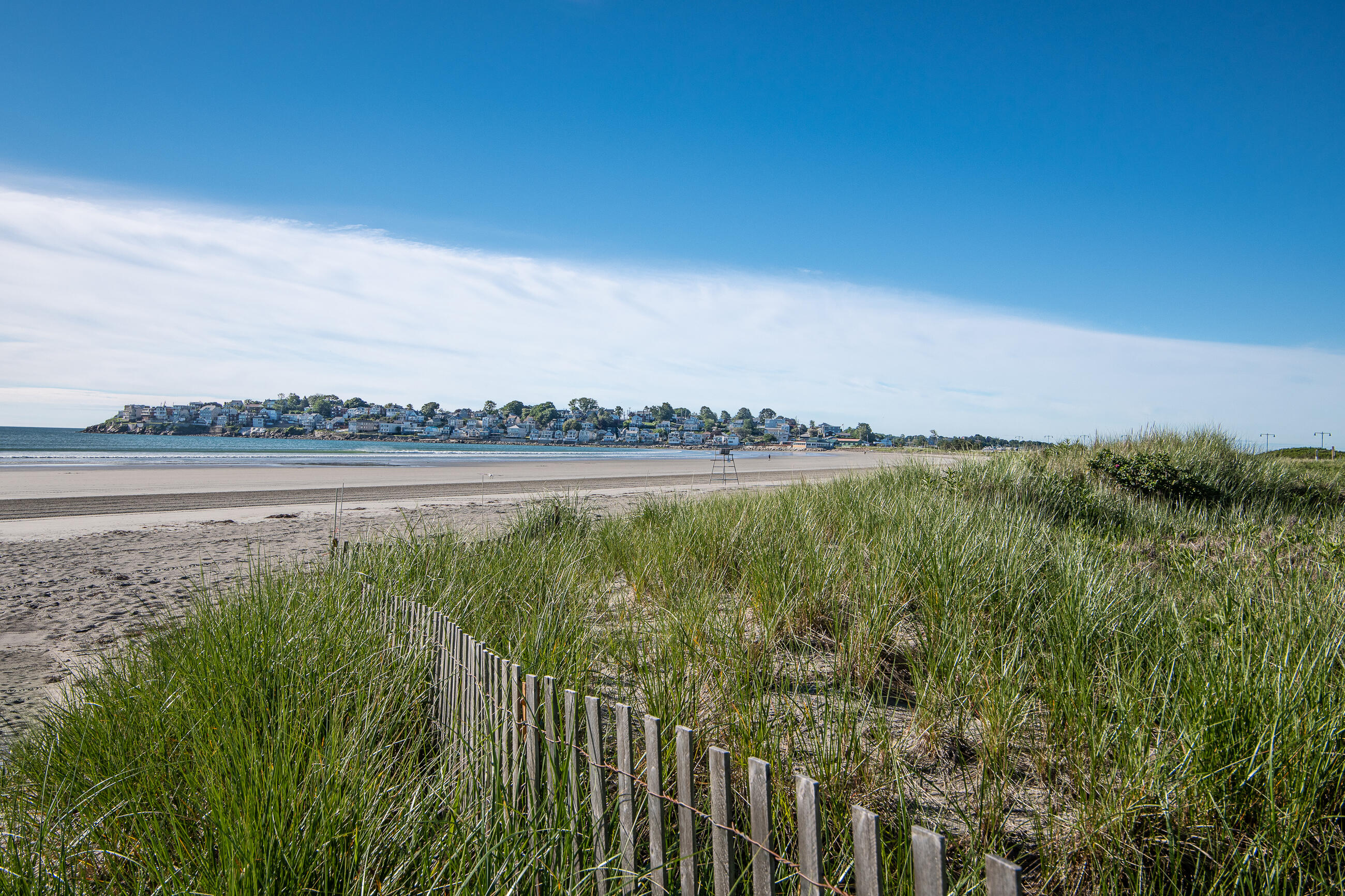 A photo of the Nahant Beach Shoreline. There's a little wooden plank fence in some grass in the foreground, and there are buildings across the water, further down the curve of the beach