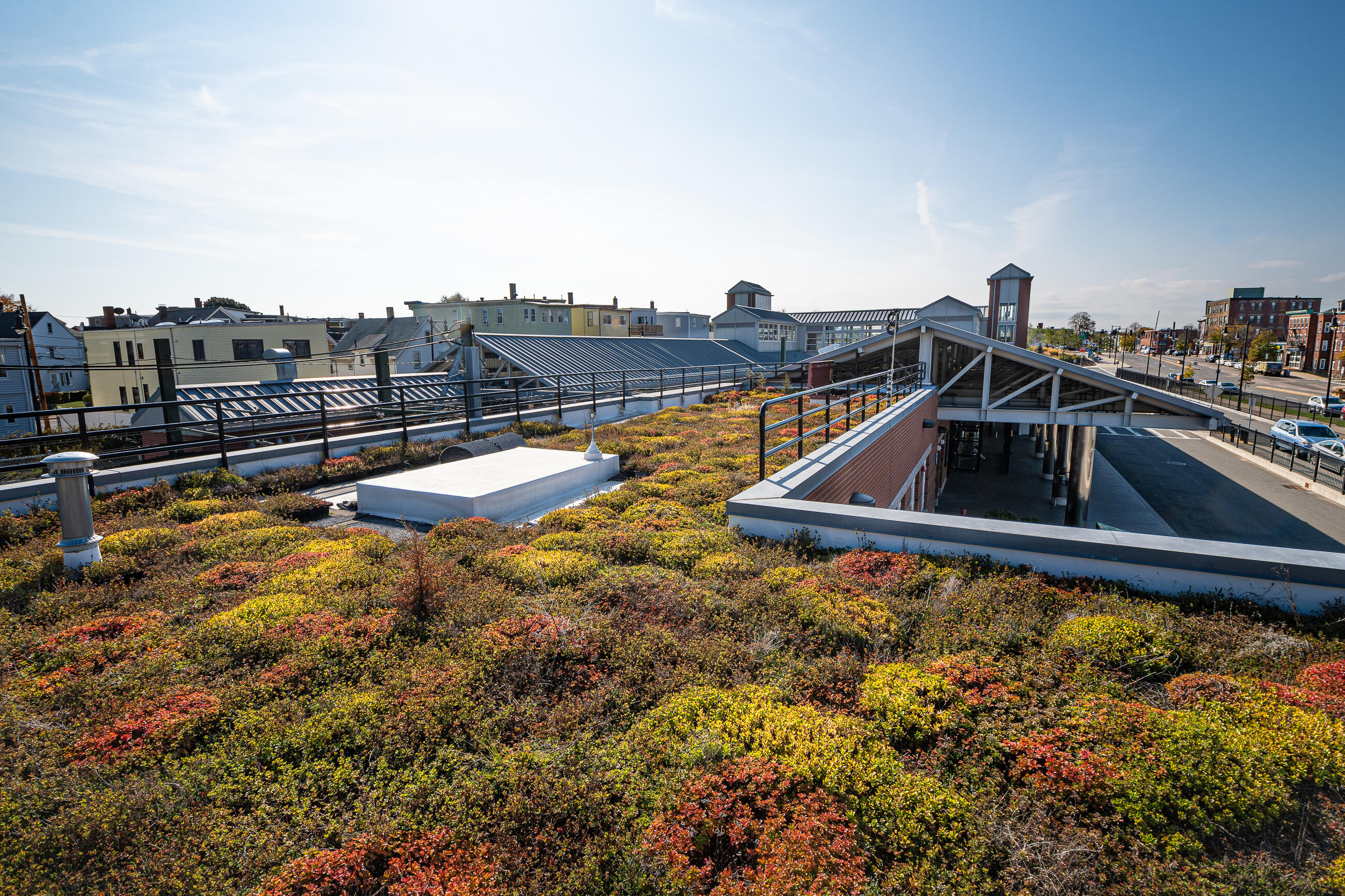 Green roof on Orient Heights Station reduces the amount of stormwater runoff entering the municipal storm system