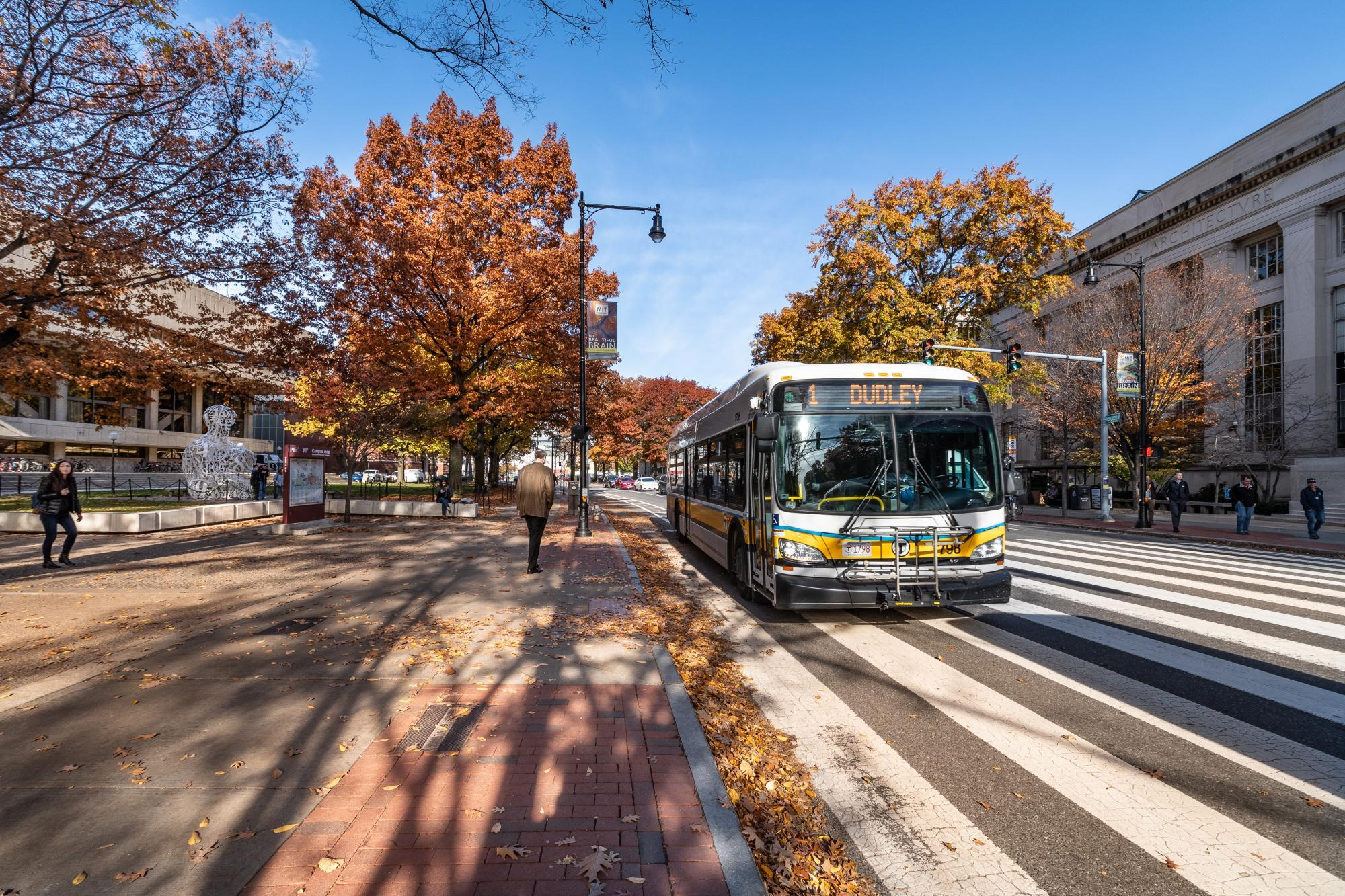 Route 1 bus on Massachusetts Avenue at the MIT crosswalk, with fall foliage in the background