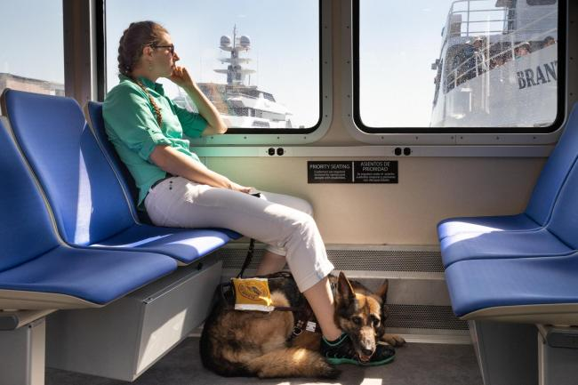 customer and guide dog in ferry priority seating