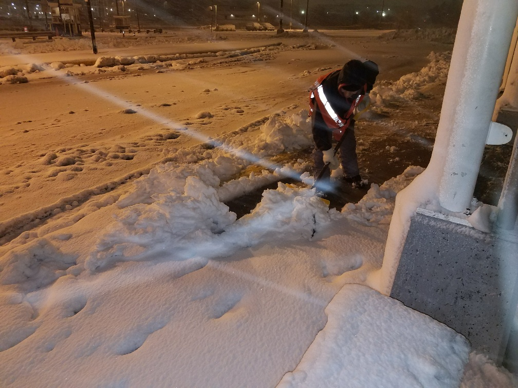 A crewperson shovels the Wellington busway, clearing snow.