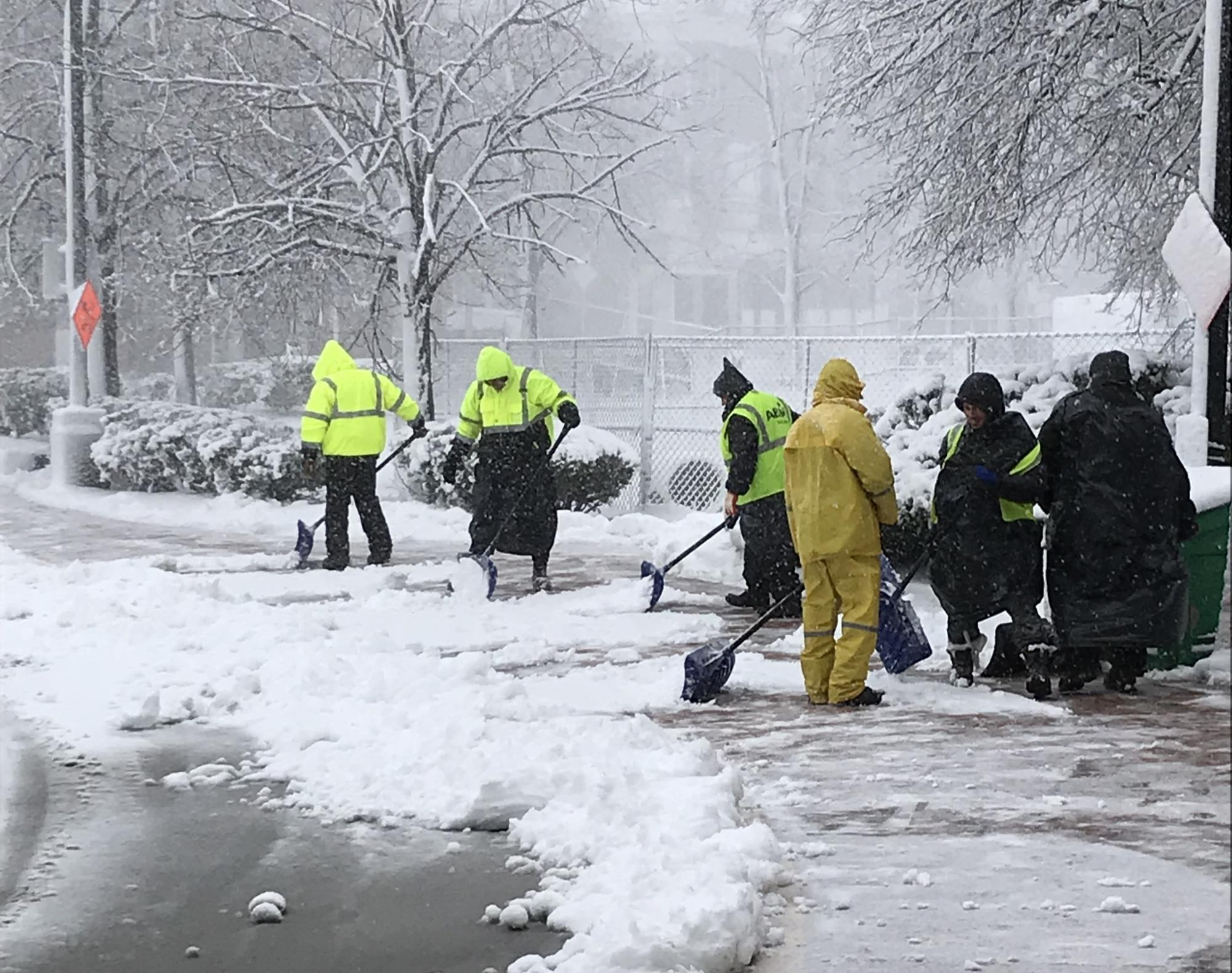 A crew of 6 shovels the sidewalk outside Forest Hills station. Snow-blanketed trees in the background.