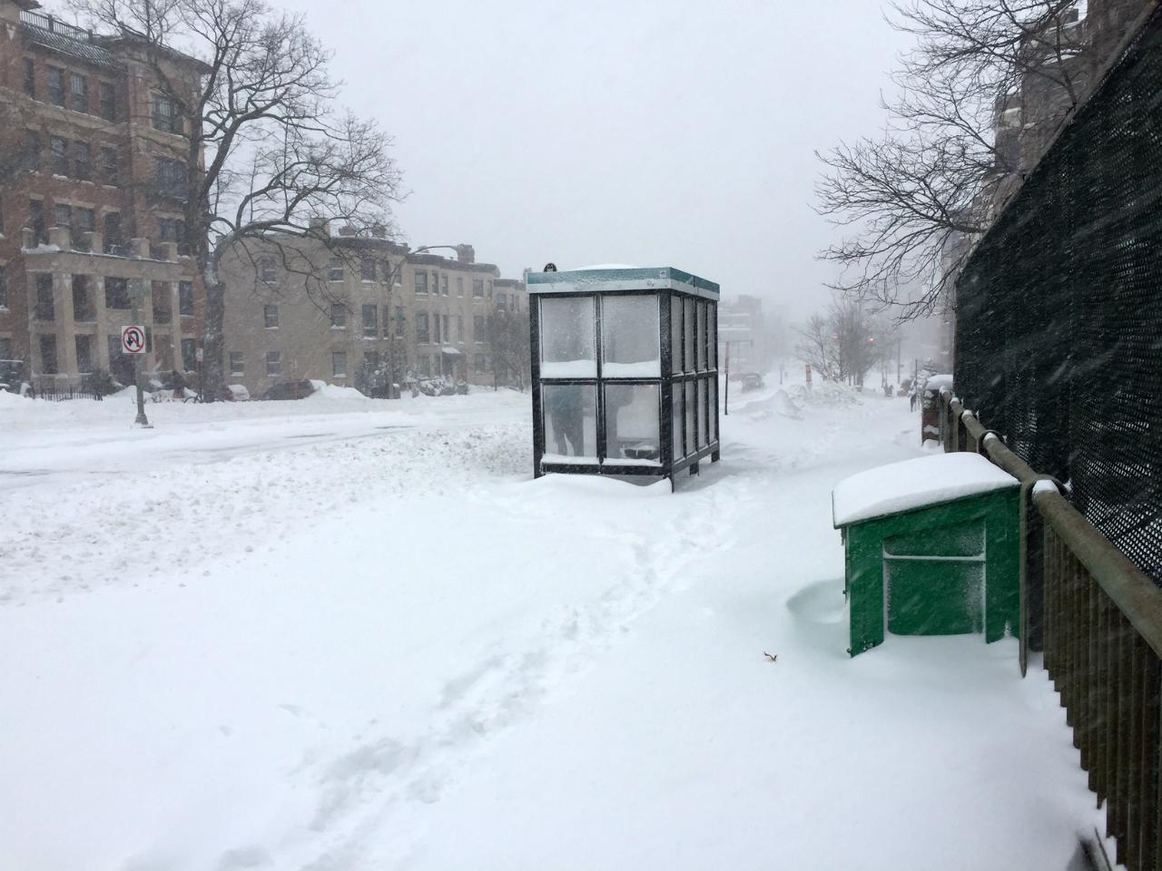 fenway-bus-shelter.jpg